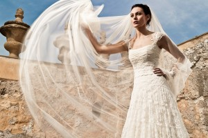 Lace wedding Dress all shapes