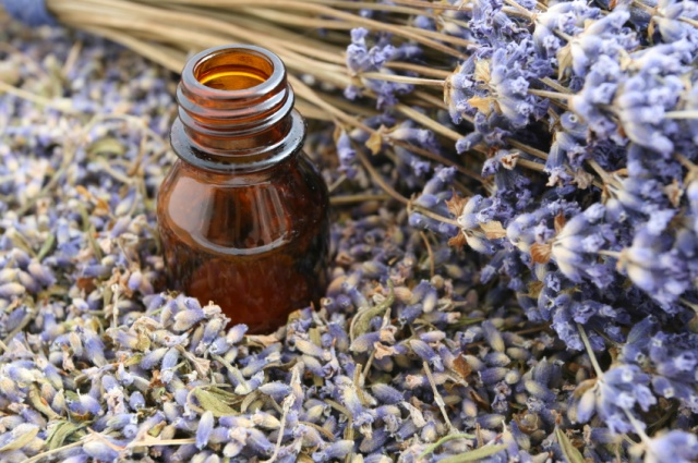 Ingredients Lavender essential oil natural cream